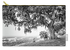 Bay Street Oak View Carry-all Pouch by Scott Hansen