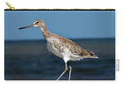 Beach Bird Carry-all Pouch by Skip Willits