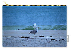 Beach Birds Carry-all Pouch