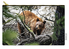 Carry-all Pouch featuring the photograph Bear In Trees by Scott Read