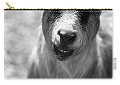 Carry-all Pouch featuring the photograph Beardy Smiley by Angela Rath
