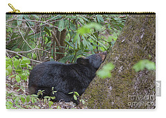 Bearly Awake Carry-all Pouch