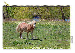 Beautiful Blond Horse And Four Little Birdies Carry-all Pouch by James BO Insogna