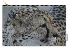 Beautiful Face Carry-all Pouch