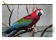 Beautiful Macaw Carry-all Pouch