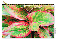Carry-all Pouch featuring the photograph Beautiful Red Aglaonema by Ray Shrewsberry