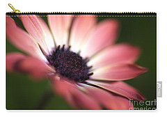Beautiful Rich African Daisy Zion Red Flower Carry-all Pouch