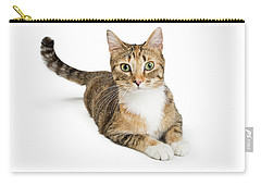 Beautiful Tabby Cat Looking At Camera Carry-all Pouch