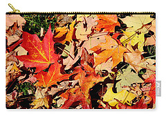 Beauty Of Fallen Leaves Carry-all Pouch