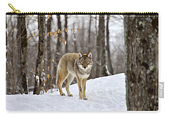 Beauty Of The Woods Carry-all Pouch