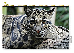 Clouded Leopard Beauty Carry-all Pouch
