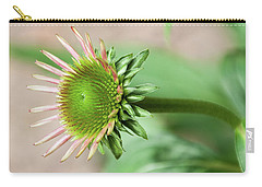 Becoming Echinacea - Carry-all Pouch