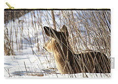 Bedded Fawn 2 Carry-all Pouch by Brook Burling