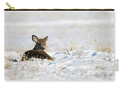 Bedded Fawn In Snowy Field Carry-all Pouch