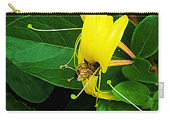Bee Looking For Food  Carry-all Pouch