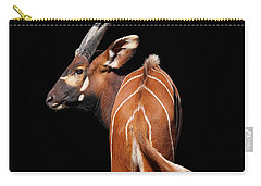 Behind The Scene - Mountain Bongo Carry-all Pouch
