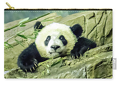 Bei Bei Panda At One Year Old Carry-all Pouch