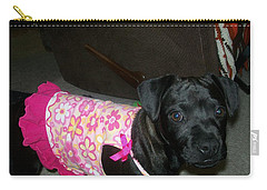 Carry-all Pouch featuring the photograph Bella In Swimsuit by Jewel Hengen