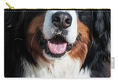 Carry-all Pouch featuring the photograph Bernese Mountain Dog Portrait  by Gary Whitton