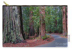 Big Basin Redwoods Carry-all Pouch