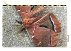 Big Beautiful Silk Moth Carry-all Pouch