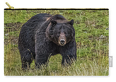 Big Black Grizzly Boar Carry-all Pouch by Yeates Photography
