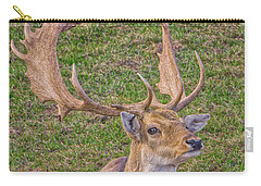 Big Buck Carry-all Pouch