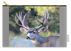 Carry-all Pouch featuring the photograph Big Buck by Shane Bechler