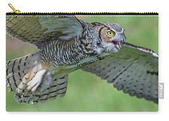 Big Eyes... Carry-all Pouch