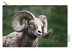 Carry-all Pouch featuring the photograph Big Horn Sheep by Scott Read