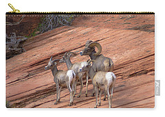 Big Horn Sheep, Zion National Park Carry-all Pouch