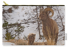 Bighorn Ram And Kid Carry-all Pouch