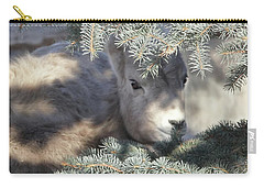 Carry-all Pouch featuring the photograph Bighorn Sheep Lamb's Hiding Place by Jennie Marie Schell