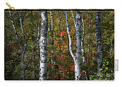 Carry-all Pouch featuring the photograph Birches by Elena Elisseeva