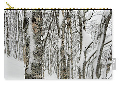 Carry-all Pouch featuring the photograph Birches In Snow by Alex Lapidus