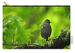 Morning Light Carry-all Pouch by William Tanneberger