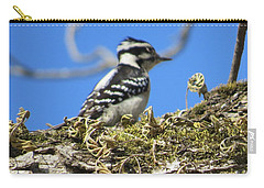 Carry-all Pouch featuring the photograph Bird Chills by Aaron Martens