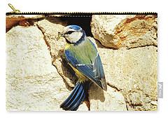 Bird Feeding Chick Carry-all Pouch