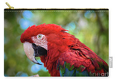Carry-all Pouch featuring the photograph Bird In Red by Lisa L Silva