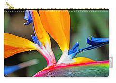 Bird Of Paradise After The Rain Carry-all Pouch