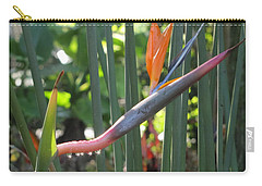 Bird Of Paradise Dripping Carry-all Pouch