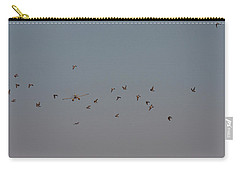 Birds And Airplane Carry-all Pouch