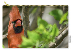 Bird's Eye Carry-all Pouch