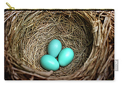 Birds Nest American Robin Carry-all Pouch by Christina Rollo