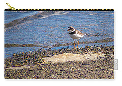 Carry-all Pouch featuring the photograph Birds Of Maine by Trace Kittrell