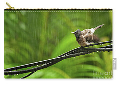 Birds Of Sri Lanka  Pycnonotus Cafer Carry-all Pouch