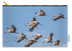 Birds Of The Same Feather. Carry-all Pouch
