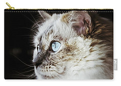 Carry-all Pouch featuring the photograph Birdwatching by Karen Stahlros