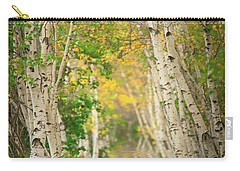 Carry-all Pouch featuring the photograph Birtch Row  by Emmanuel Panagiotakis