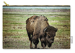 Carry-all Pouch featuring the photograph Bison Bird Bus by Mary Hone